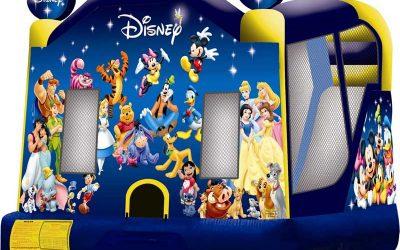 Disney 3-1-Wet