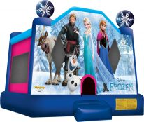 Frozen 3-in-1-Wet