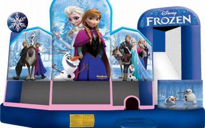 Frozen 5-1 Dry