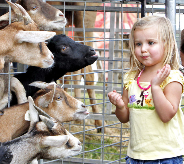 APphoto_Virginia State Fair