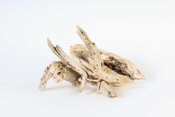 INV411- Driftwood