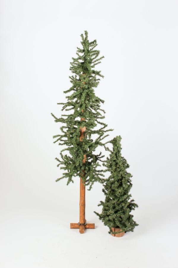 INV582-584-Alpine Trees