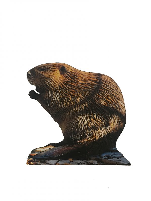 beaver-cut-out
