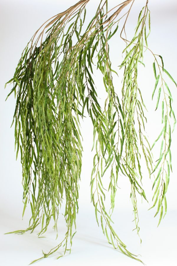 weeping greens