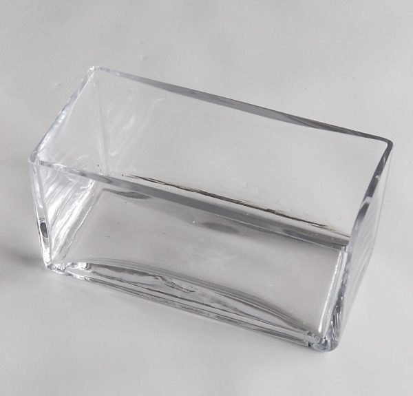 8 x 4 in Clear Planter