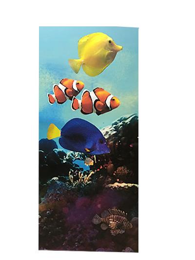 under-sea-fish